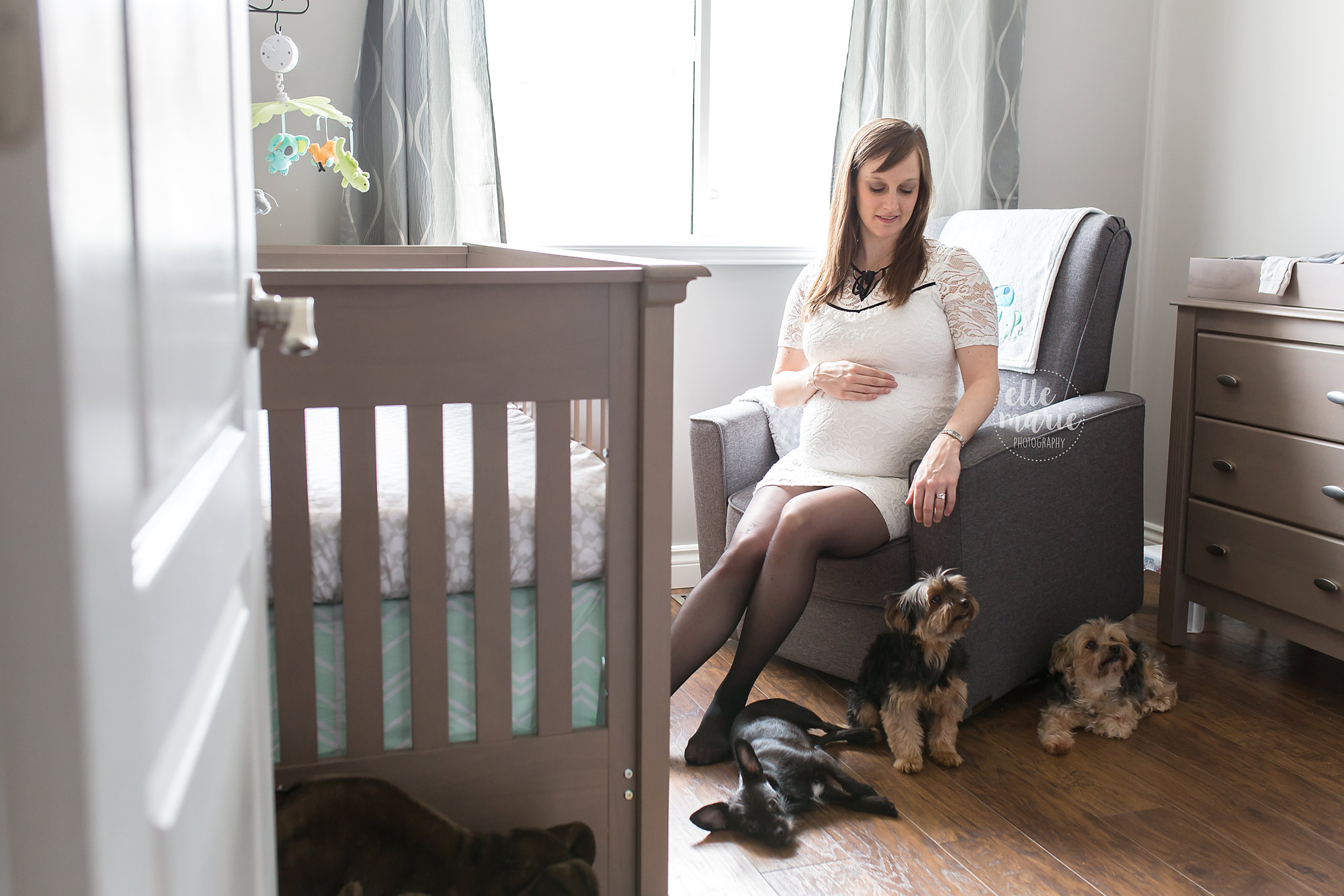 expecting mom and dogs in nursery